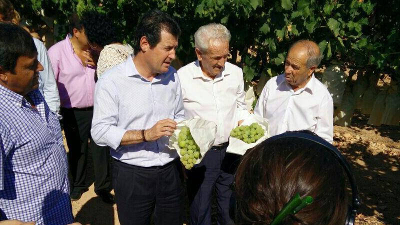 Photo of La sequía y el veto de Rusia afecta a la campaña de la uva de mesa