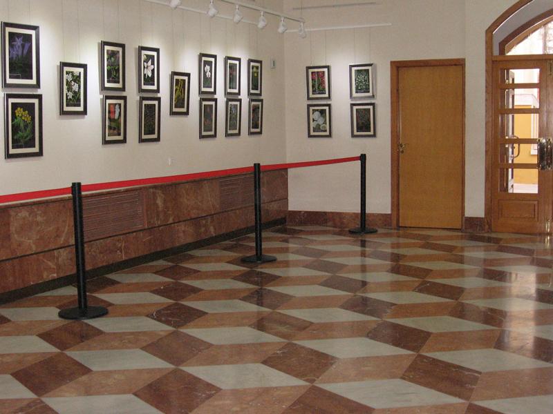 Photo of 62 cuadros participan en el premio nacional de pintura Pastor Calpena