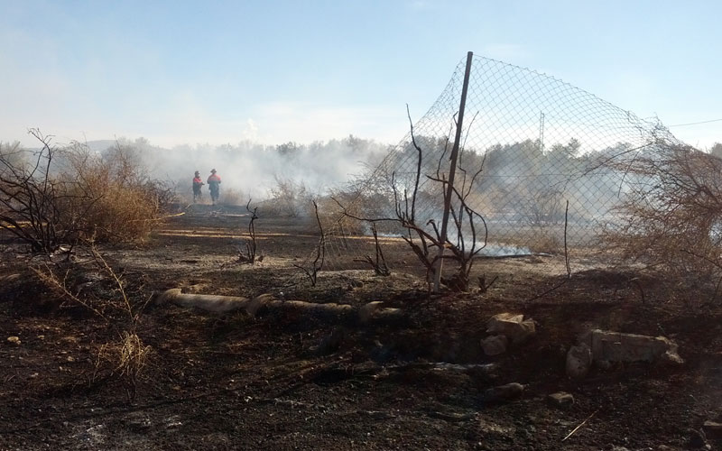 Photo of Incendio de varias parcelas en la Huerta Mayor