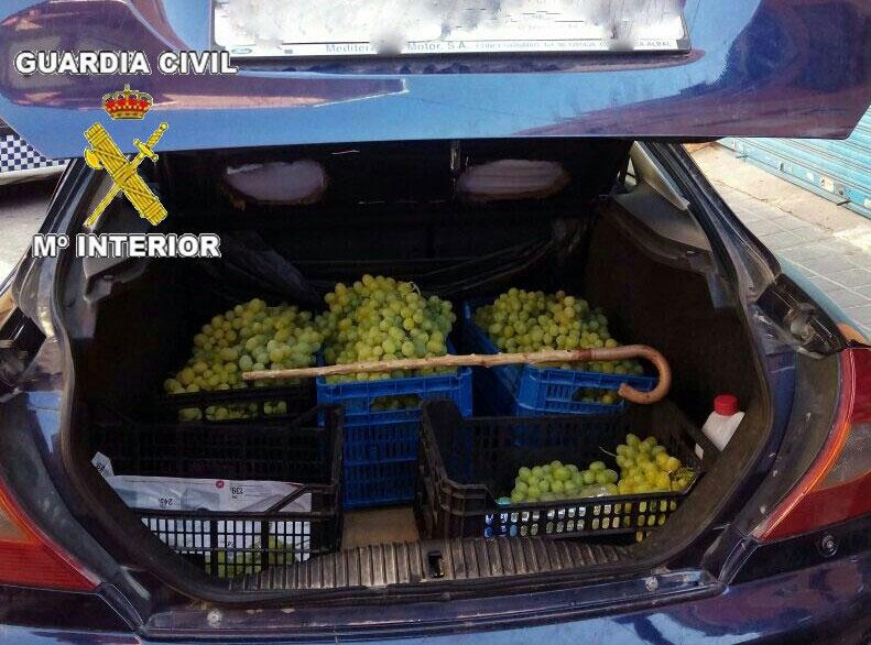 Photo of La Guardia Civil detiene a los presuntos autores del robo de más de 3 toneladas de uva en Monforte