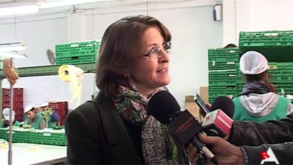Photo of Vídeo: Visita Consellera Elena Cebrián al almacén de uva Hermanos Mateo de Aspe
