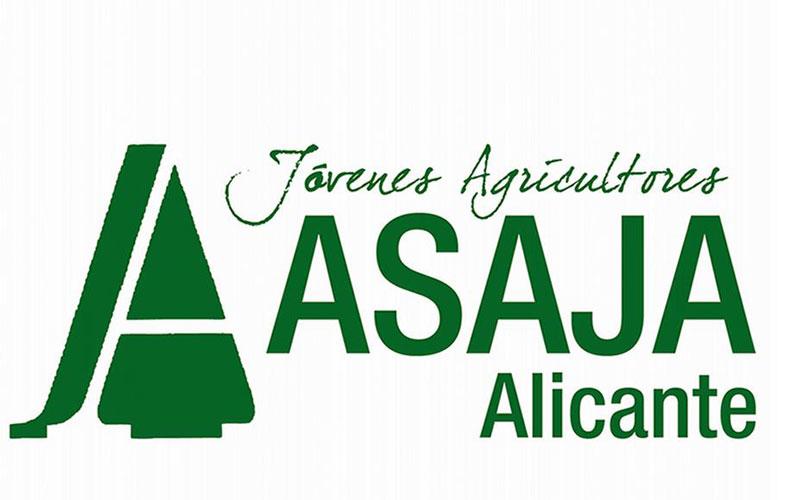 Photo of #Comarca – ASAJA Alicante asegura que la reducción del IRPF discrimina al níspero, la uva de mesa y la cereza