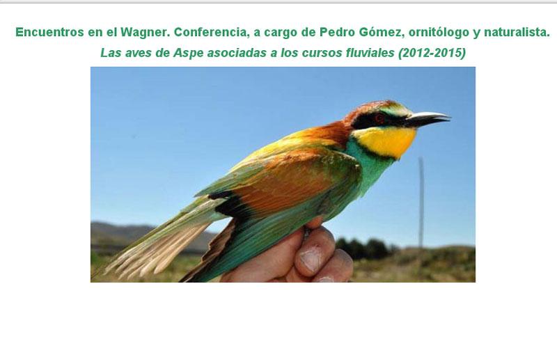 Photo of #Aspe – Pedro Gómez Clavel ofrece una charla sobre anillamiento de aves