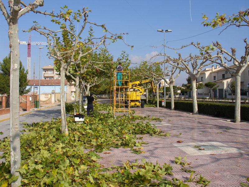 Pinoso apuesta por la gesti n directa del servicio de for Mantenimiento parques y jardines