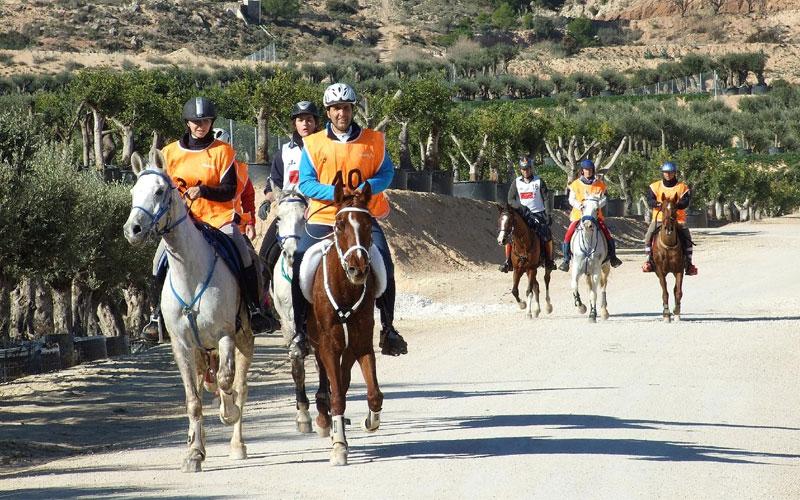 Photo of #Diputación incluye el VII Raid Hípico de Aspe en las ayudas al deporte de la provincia