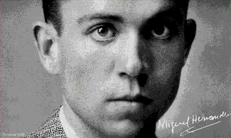 Photo of #Aspe: Taller de pintura en homenaje a Miguel Hernández