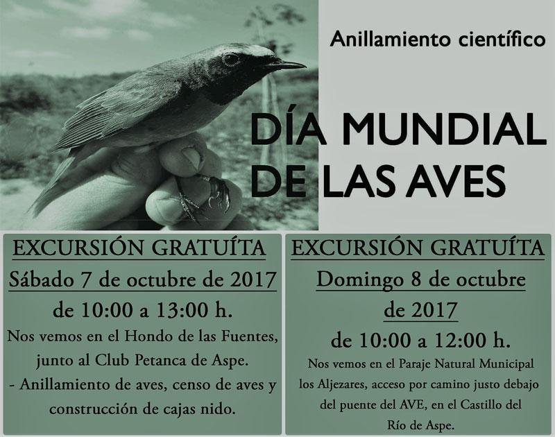 Photo of #Aspe: Anillamiento, construcción de cajas nidos y censo de pájaros para el Día Mundial de las Aves