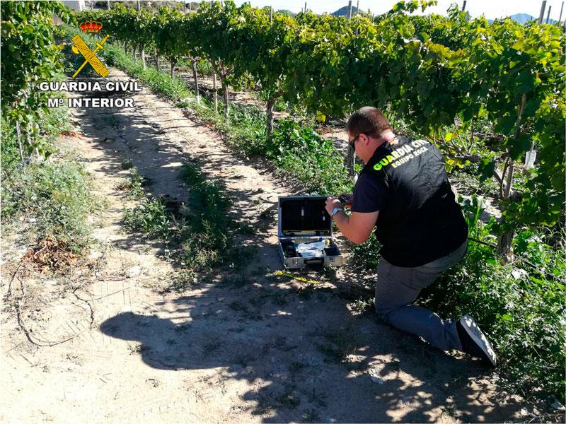 Photo of #Monforte: El Delegado del Gobierno supervisa el despliegue contra los robos en el campo