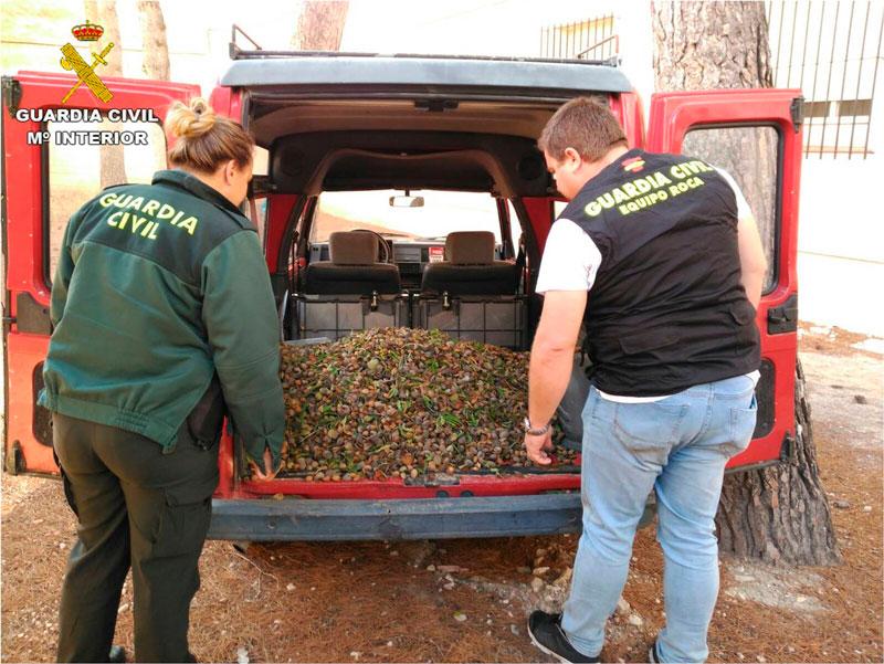 Photo of #Sax: Detienen a tres miembros de una misma familia por sustraer más de dos toneladas de almendra