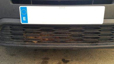 Photo of #Elda: Rescatan a un gato atrapado en la ventilación de un vehículo en Elda