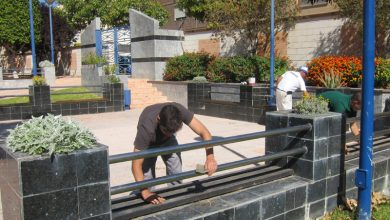 Photo of #Novelda: Contratan a trece trabajadores en situación de desempleo en Novelda