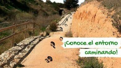 Photo of #Aspe potencia el turismo con salidas guiadas por senderos homologados