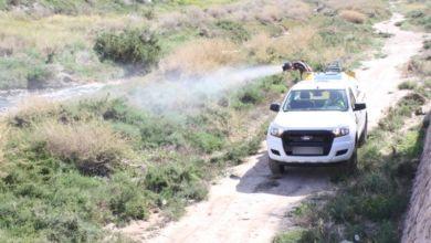 Photo of #Novelda: Nuevas fumigaciones contra el mosquito tigre