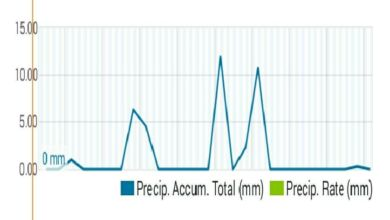 Photo of #Aspe: Entre 37 y 47 litros de lluvia en septiembre