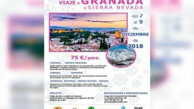 Photo of #Novelda: Juventud oferta un viaje a Granada