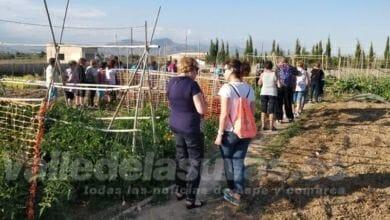 Photo of #Aspe: Ponen en marcha cinco cursos y talleres de rejuvenicimiento activo