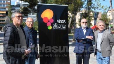 Photo of #Elda: Disfruta de los mejores vinos de la provincia en la Plaza Castelar