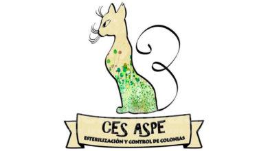 Photo of #Aspe: CES Aspe rechaza la moción de apoyo a la caza que el PP presentará a pleno