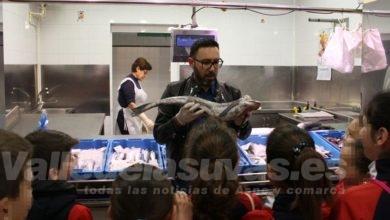 Photo of #Novelda: El Mercado de Abastos acoge una nueva edición del Mercacole