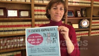 Photo of #Aspe acoge este sábado un encuentro animalista