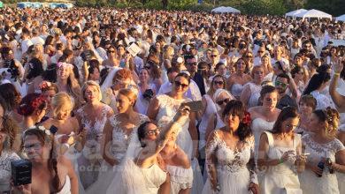 Photo of #Petrer: Sedka Novias logra el récord Guinness con 1.347 mujeres vestidas de novia