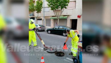 Photo of #Aspe: El Ayuntamiento realiza dos fumigaciones más contra el mosquito tigre