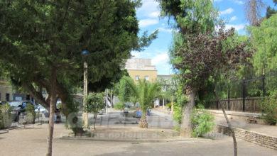 Photo of #Novelda: Detienen a un exhibicionista en el parque Félix Rodríguez de la Fuente