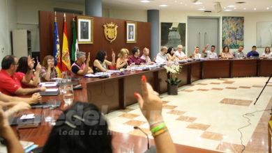 Photo of #Novelda: Inician la licitación para el servicio de limpieza de dependencias municipales