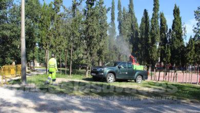 Photo of #Diputación: 635.000 euros para el control de dípteros y la esterilización de gatos