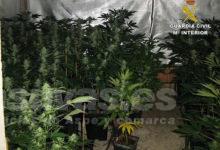 Photo of #Aspe: Detienen a un matrimonio sexagenario de Aspe por cultivar marihuana en su domicilio