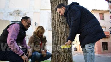Photo of #Petrer endurece la ordenanza contra los excrementos y el orín de los perros en espacios públicos