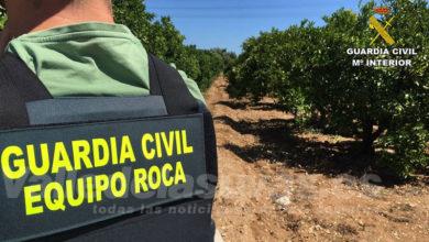 Photo of #Comarca: La Guardia Civil detiene a 18 personas por robos en el campo