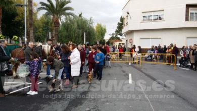 Photo of #Monforte celebrará la romería y bendición de animales por San Antón