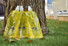 Photo of #Petrer: Repartirán botellas rellenables para el orín de animales en la romería de San Antón