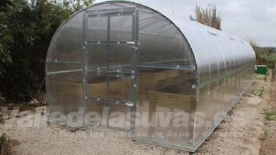 Photo of #Novelda: Nuevo invernadero en los Huertos Ecológicos Municipales