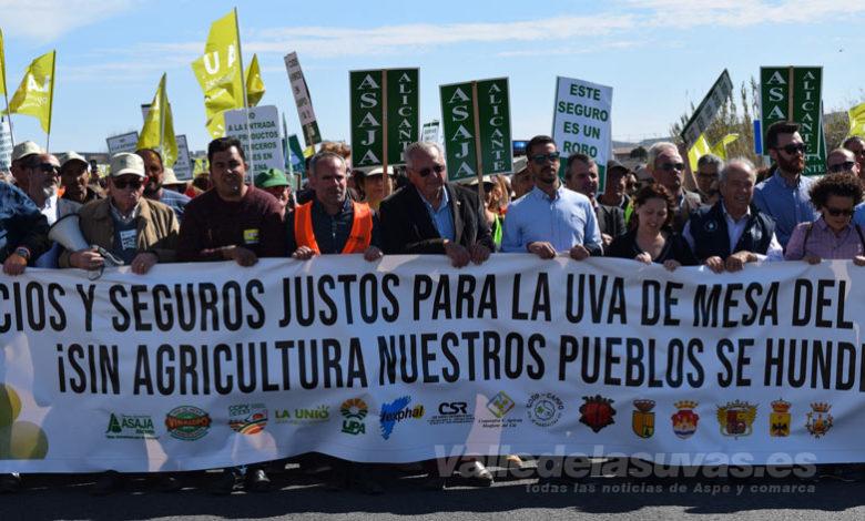Photo of #Comarca: Éxito de la Tractorada por la uva del Vinalopó
