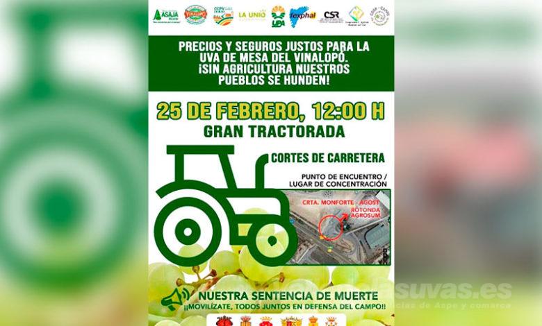 Photo of #Comarca: El campo alicantino se moviliza contra los bajos precios de la uva de mesa