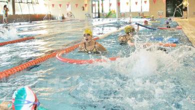 Photo of #Aspe: Deportes comienza el proceso de renovaciones de sus cursos