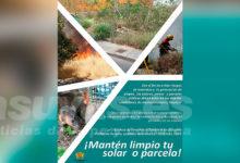 Photo of #Novelda: Medio Ambiente pone en marcha una campaña informativa para la limpieza de solares y parcelas
