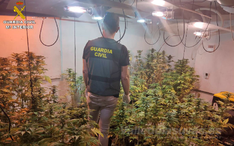 marihuana Hondón