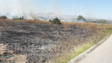 Photo of #Aspe: Más de 10.000 euros para redactar un nuevo Plan de Prevención de Incendios Forestales