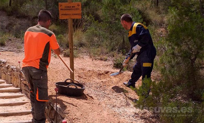 Photo of #Petrer: Acondicionan el acceso a la senda del Cid para facilitar su uso correcto y evitar la erosión