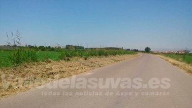 Photo of #Monforte: Agricultura comienza el servicio de desbrozamiento de caminos 2020