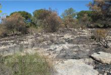 Photo of #Pinoso: La Guardia Civil esclarece dos incendios provocados