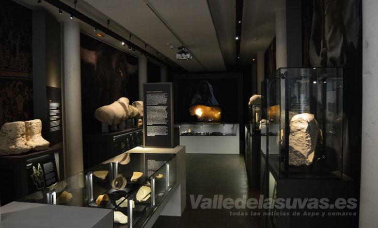 Museo Ibero Monforte del Cid
